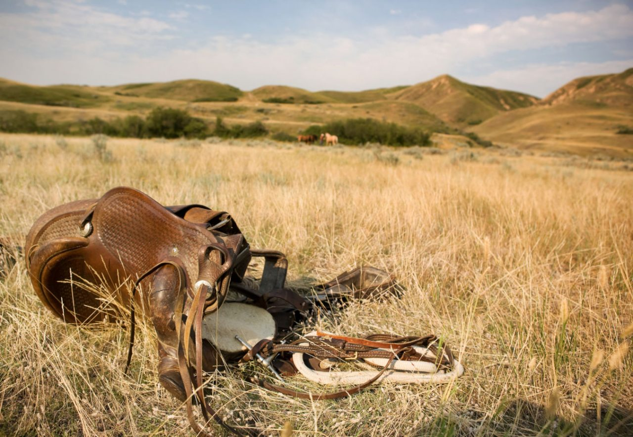 A western saddle laying on the prairie grassland